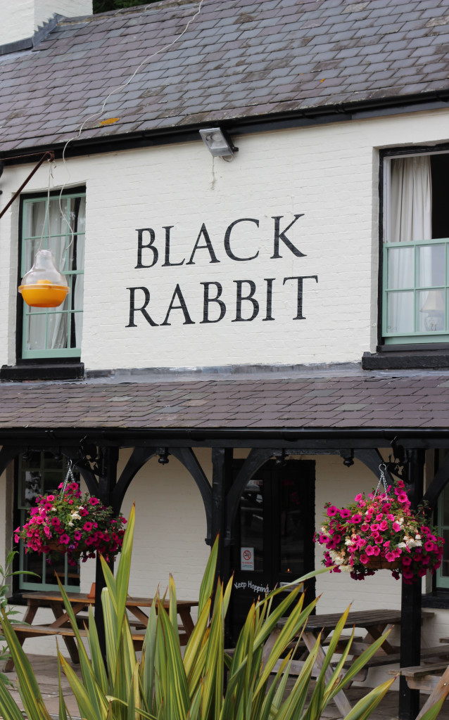 Arundel Black_Rabbit