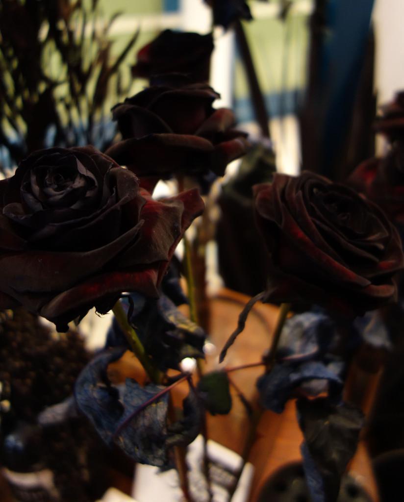 Black Roses Kraken Rum Think Ink