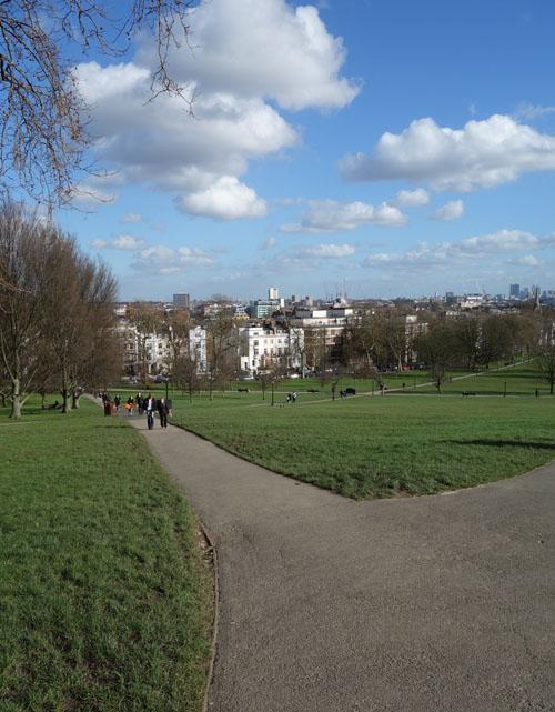 Primrose Hill London View
