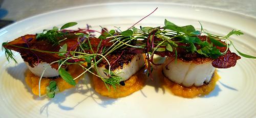 Tuttons Covent Garden Restaurant Scallops