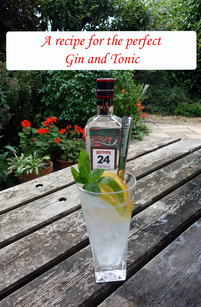 London Beefeater Gin and Tonic Feature
