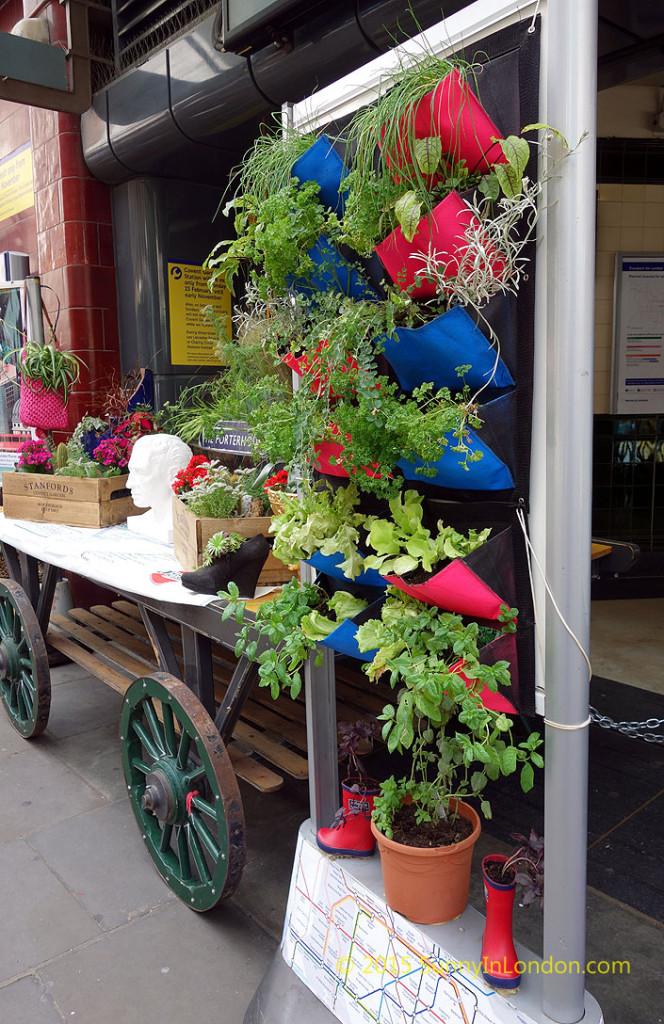 covent-garden-underground-station-flowers