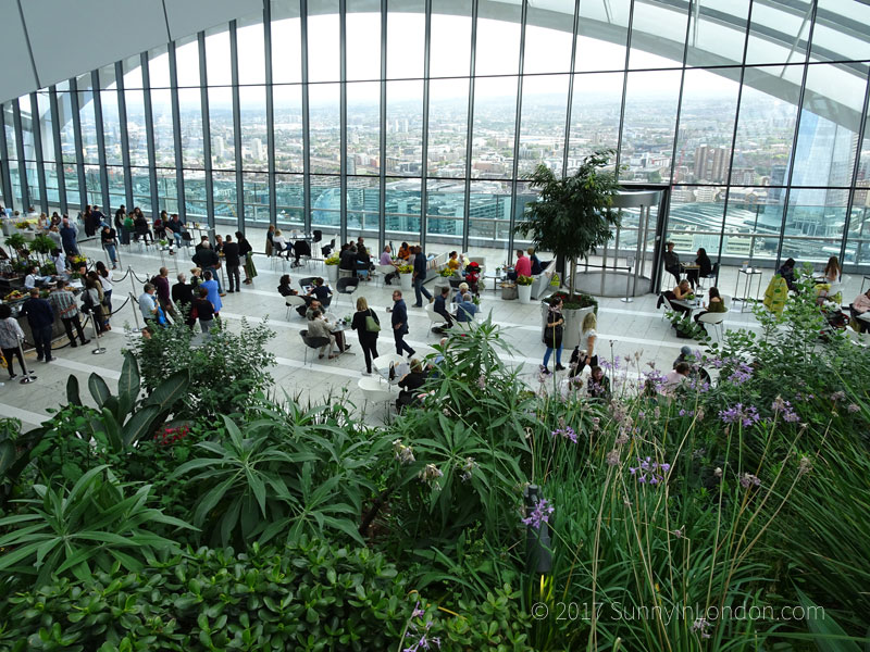 london-travel-tips-londoner-guide-american-expat