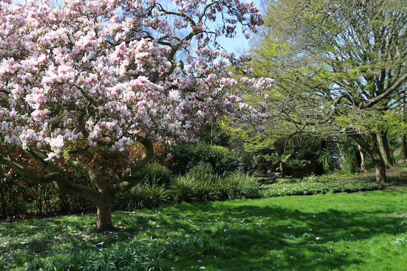 things-to-do-in-hyde-park-london