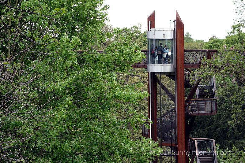 tips-visiting-kew-gardens-london-treetop-walkway