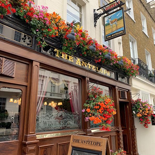 best-pubs-in-chelsea-kings-road-pub-crawl-london-antelope